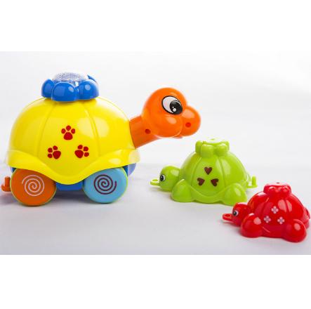 Funny Little Turtes